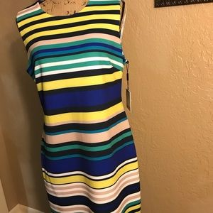 Calvin Klein Sleeveless Stripe Hem Sheath Dress